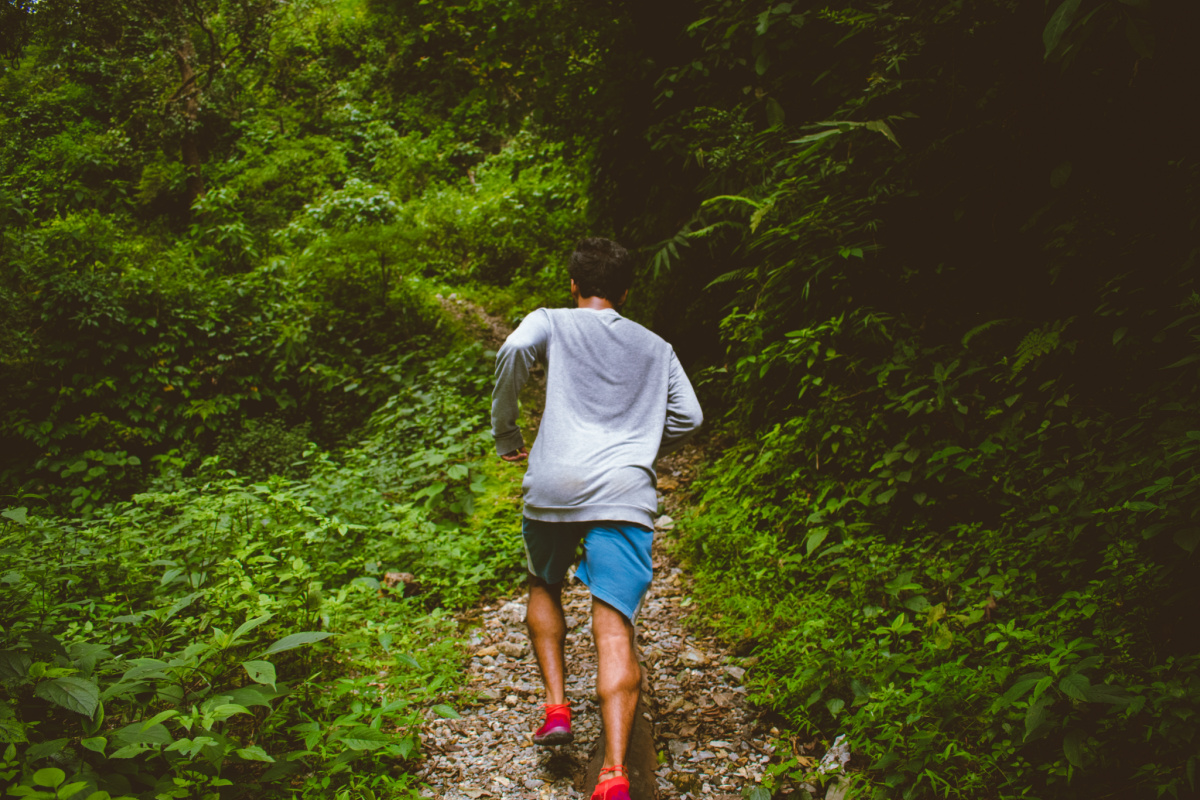 man running up a trail into a dense forest