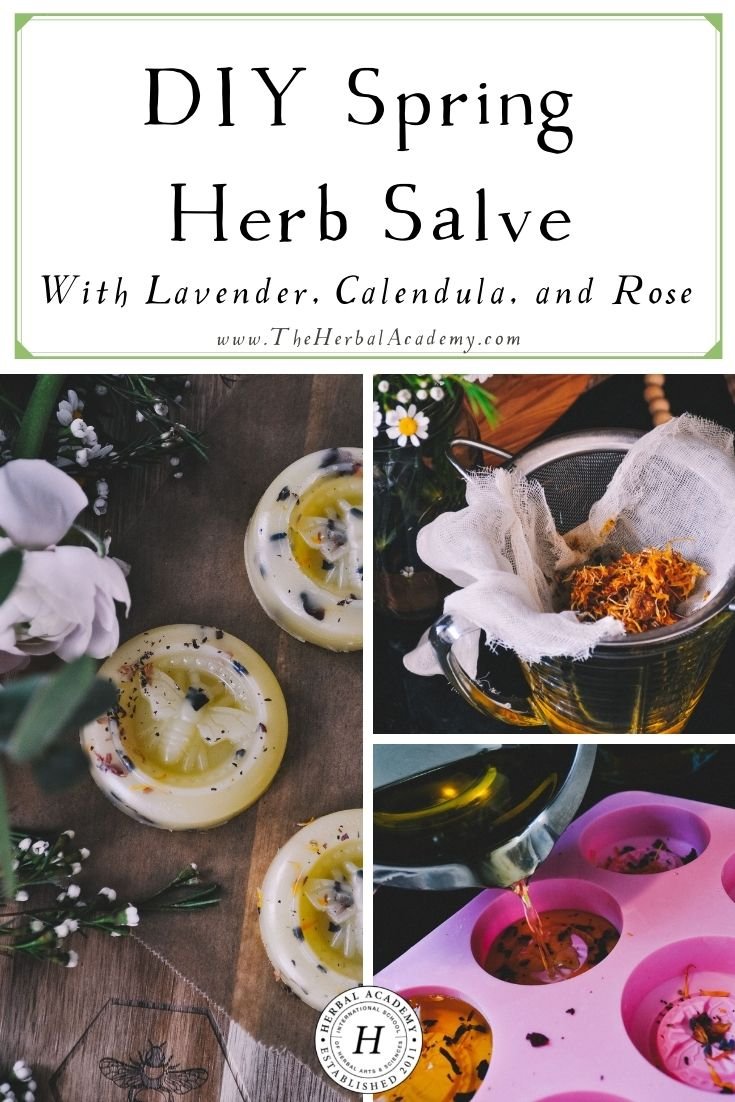 DIY Spring Herb Salve with Lavender, Calendula, and Rose | Herbal Academy | This spring-inspired herb salve recipe is perfect for dry hands, a rash, a small cut, chapped lips, and even burns.