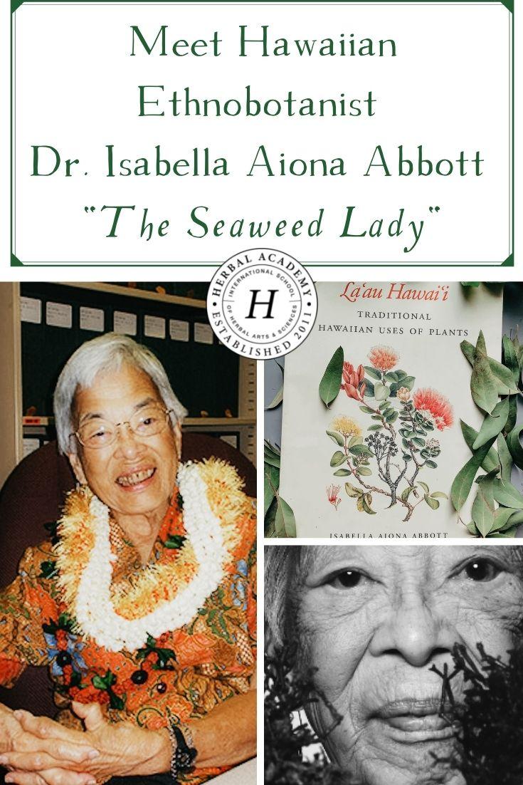 "Meet Hawaiian Ethnobotanist Dr. Isabella Aiona Abbott ""The Seaweed Lady"" | Herbal Academy | Isabella Aiona Abbott, the seaweed lady, was a botanist who worked at preserving Native Hawaiians' knowledge of seaweeds and plant uses."