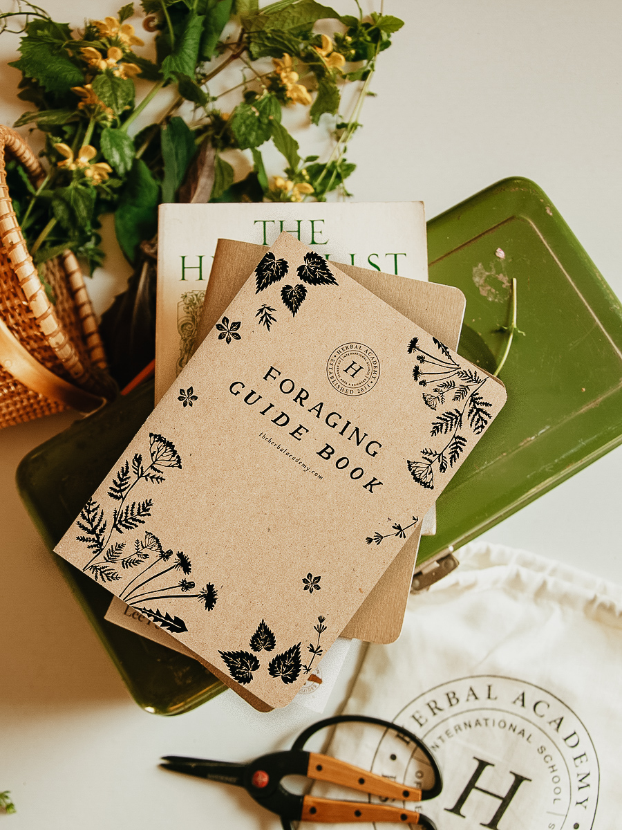Foraging-Guide-Notebook-Cover