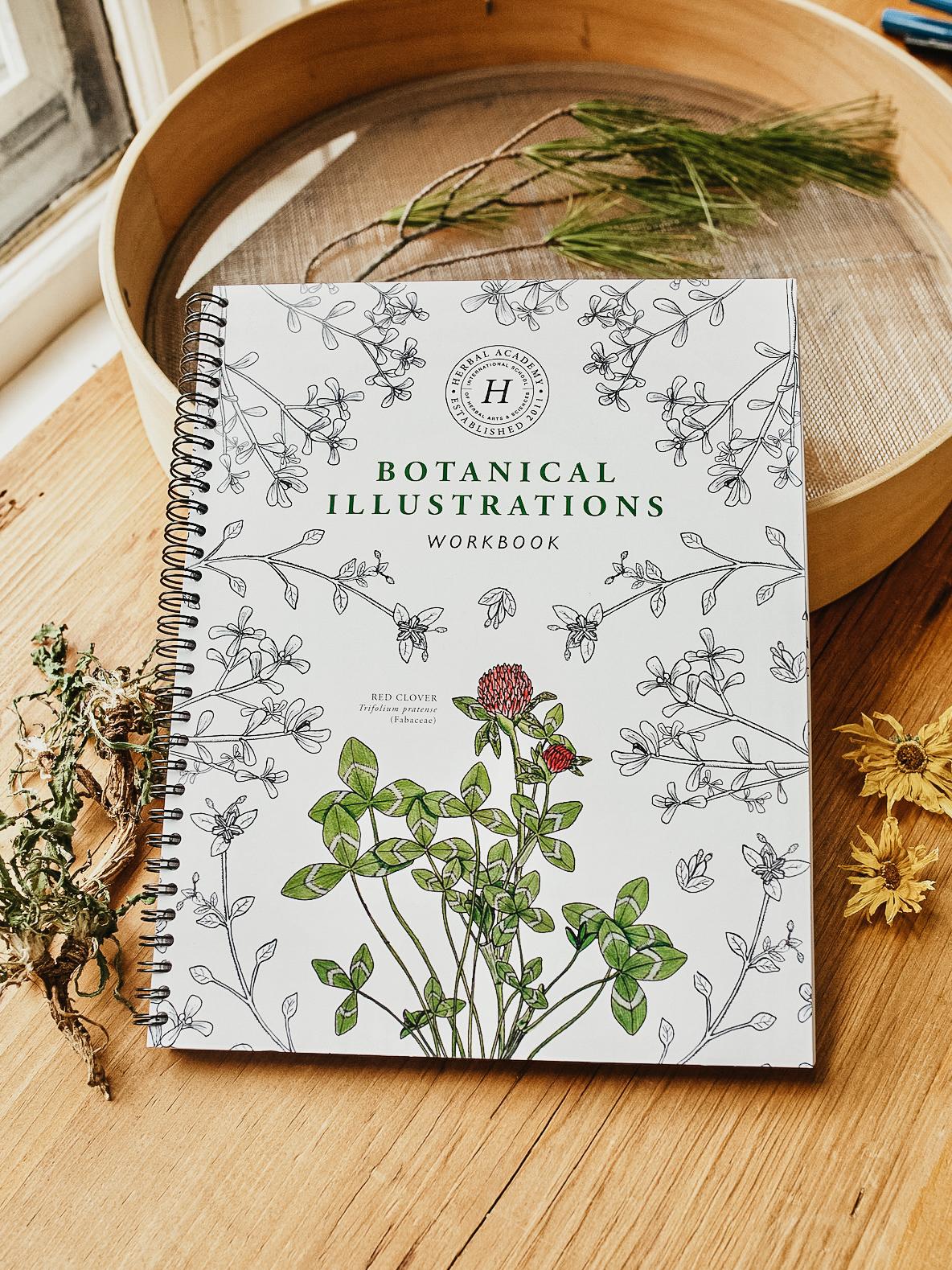 Botanical Illustrations Workbook