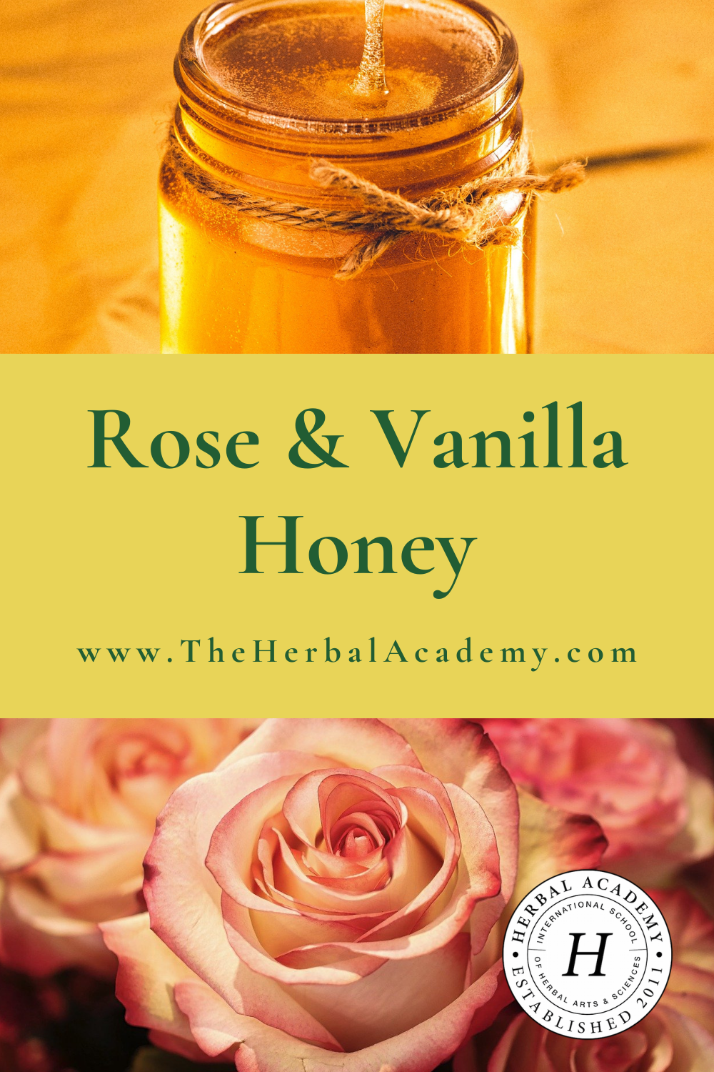 Rose and Vanilla Honey Recipe | Herbal Academy | This simple rose and vanilla honey is a wonderful gift idea for someone you love and is sure to be a hit to the heart.