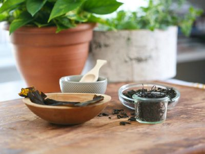 How to Source Sustainable Seaweed   Herbal Academy   Sustainable seaweed is kind to the planet and can make a delicious, nutritious addition to your soups, salads, smoothies, and baked goods!