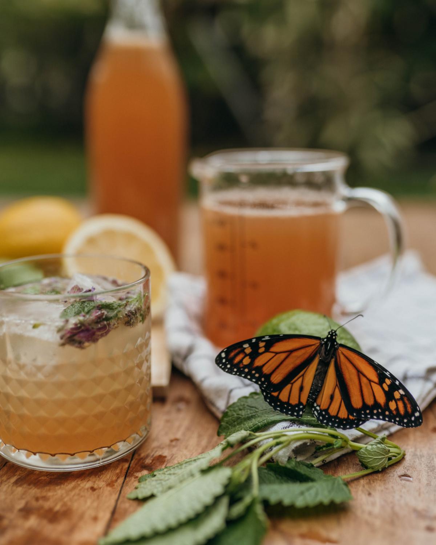 ingredients to make lavender-lemon balm lemonade