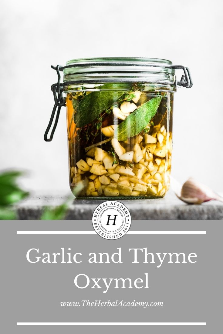 Garlic and Thyme Oxymel | Herbal Academy | This Garlic and Thyme Oxymel is easy to make, delicious, and perfect for times when you need a little extra respiratory or immune support.
