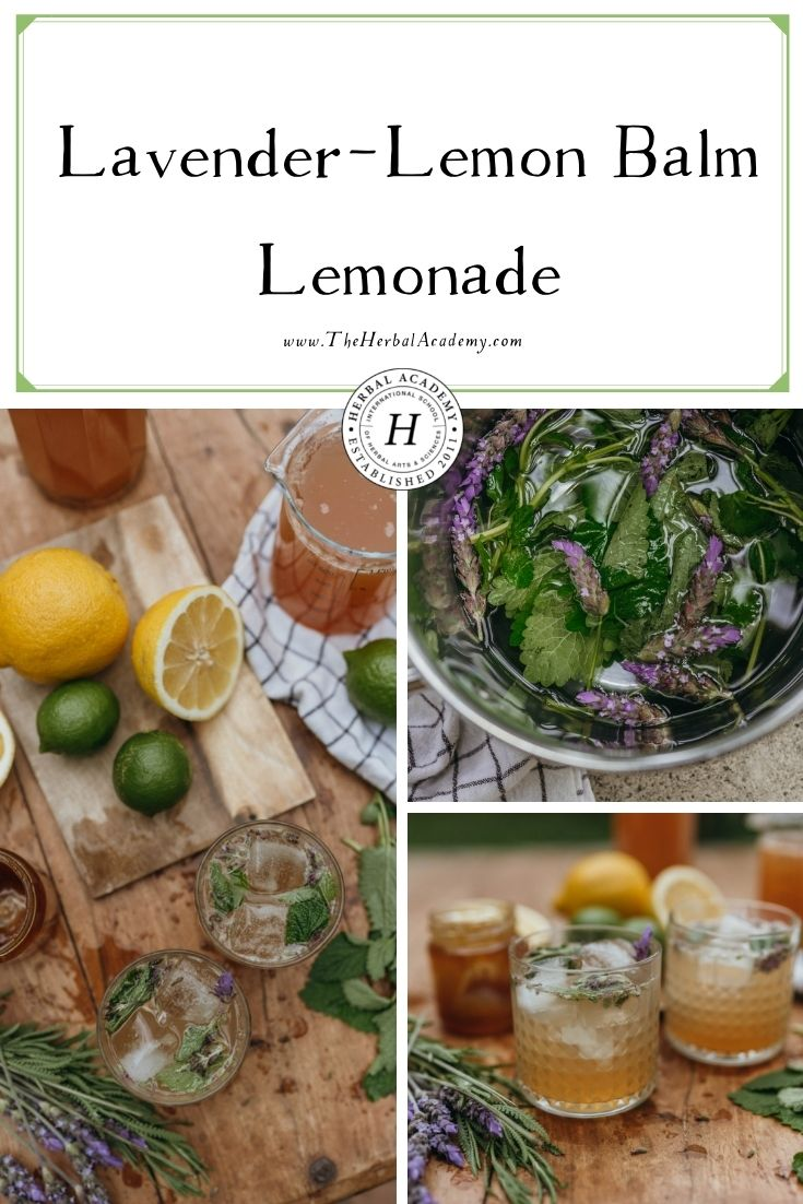 Lavender-Lemon Balm Lemonade   Herbal Academy   If you are craving a zesty refresher with an herbal twist, this easy herbal lemonade recipe will be a great choice!