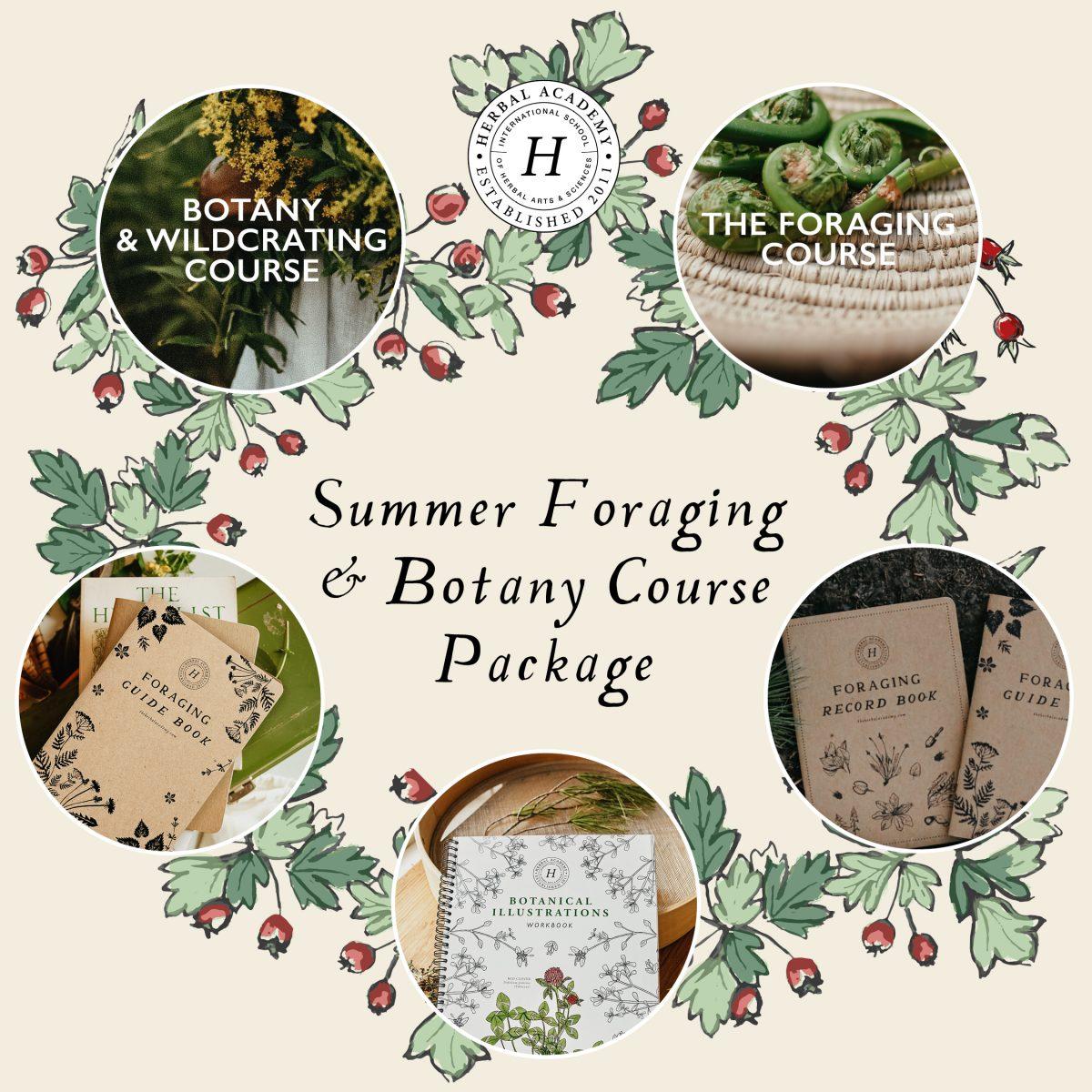 Summer Foraging Bundle June 4-20 2021