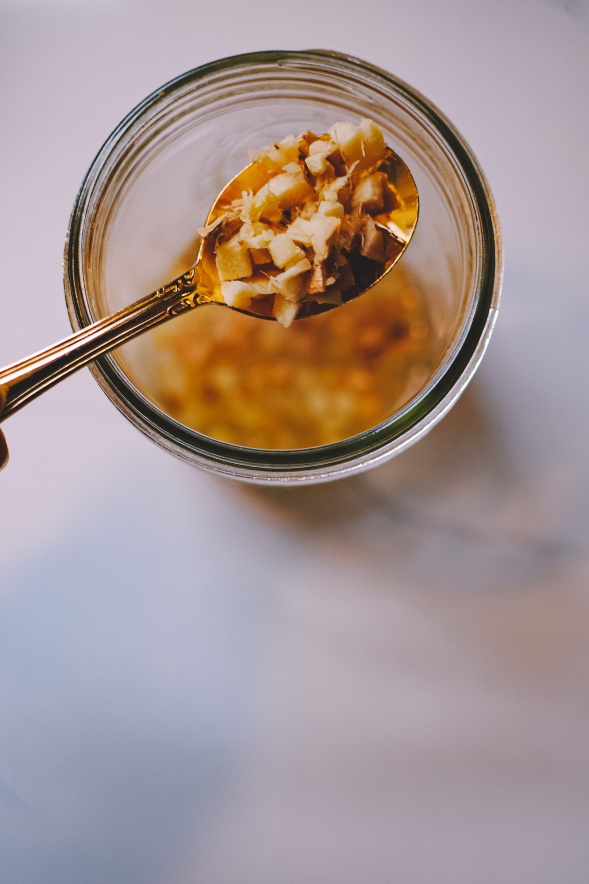 ginger bug on a spoon