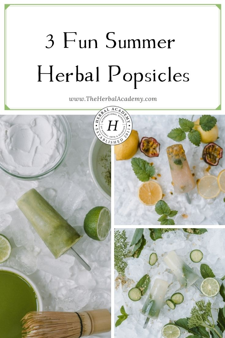 3 Fun Summer Herbal Popsicles   Herbal Academy   Herbal teas are awesome, but have you tried to make herbal popsicles? These popsicles are truly like a delicious cup of tea in a popsicle!