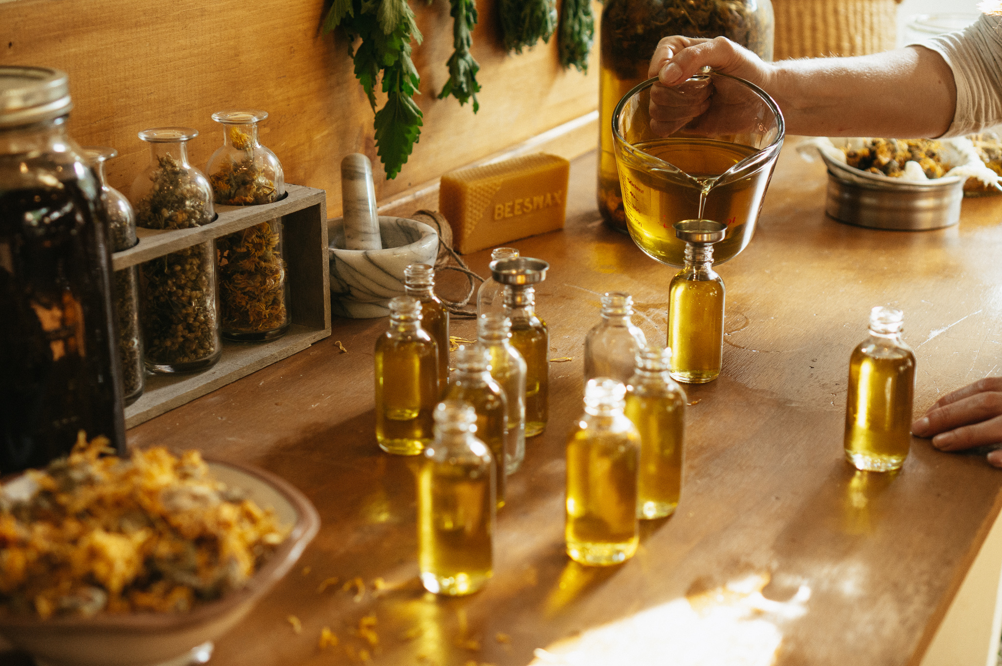 calendula oil production - Business Herbal Course