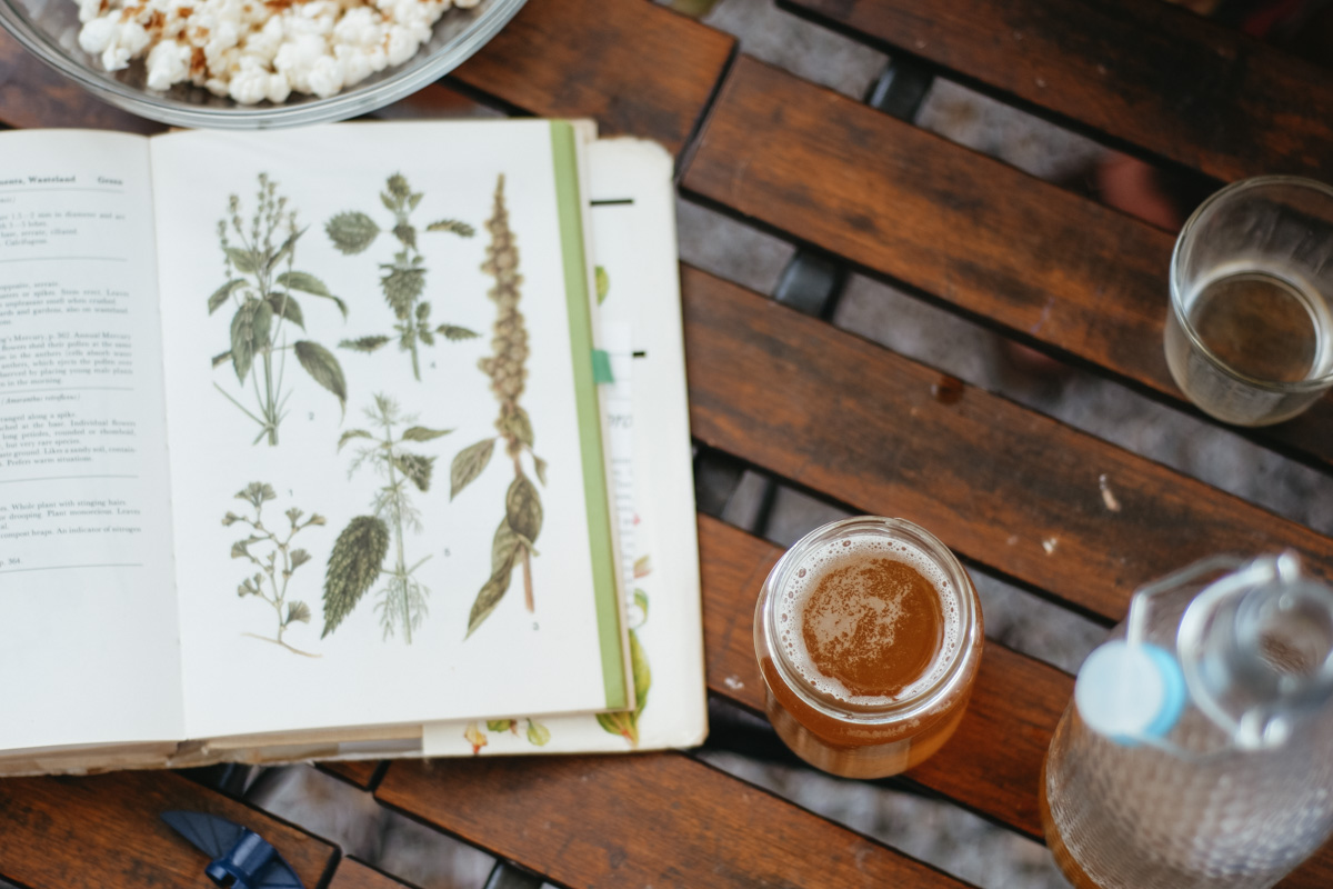 How to make herbal fermented drinks at home – The Craft of Herbal Fermentation Course