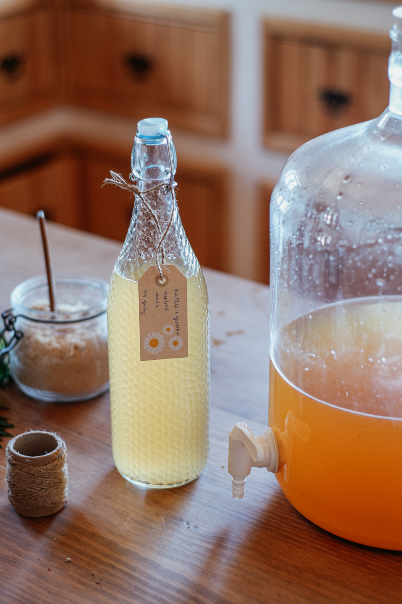Herbal Academy – The Craft of Herbal Fermentation Course- Making Nettle Beer