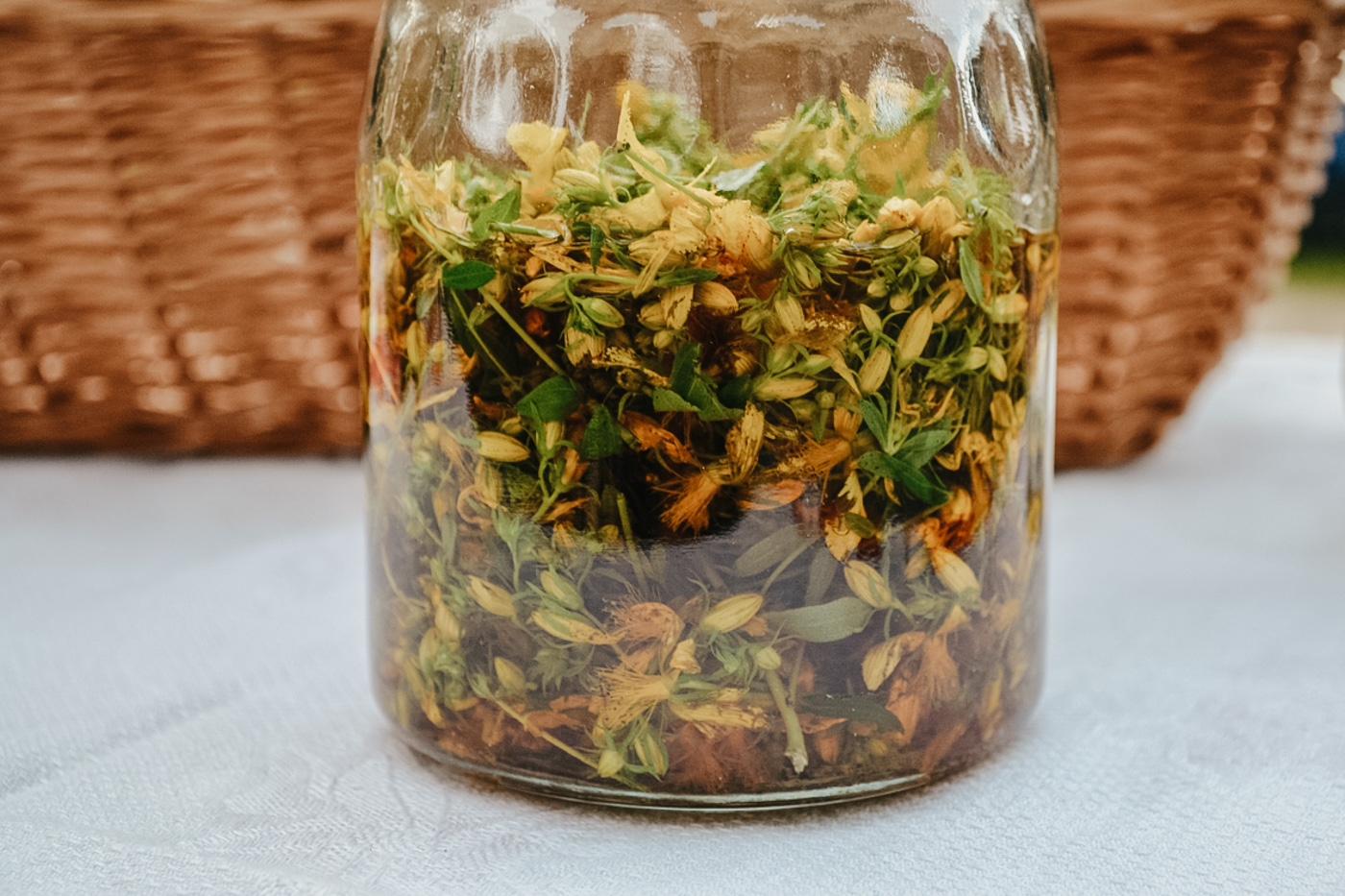 Herbal Academy's The Foraging Course – introduction to foraging and making wild foraged remedies
