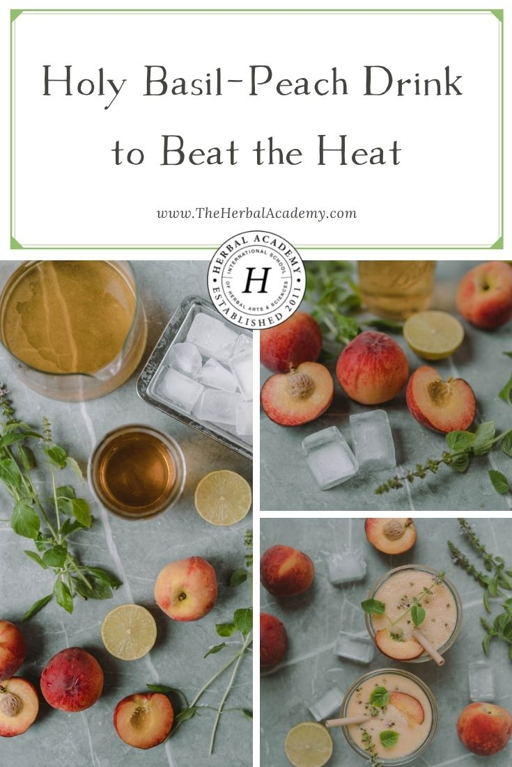 Holy Basil-Peach Drink to Beat the Heat | Herbal Academy | Are you searching for holy basil recipes? This holy basil leaf and peach drink are an incredibly refreshing combination for hot summer days.