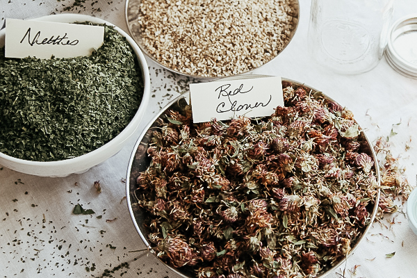 Learning the basics of herbalism - Herbal Academy