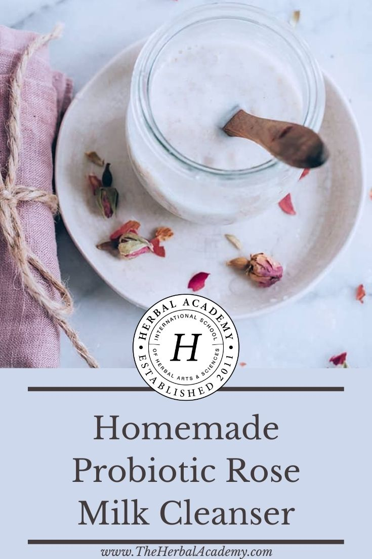 Homemade Probiotic Rose Milk Cleanser | Herbal Academy | This simple DIY rose milk cleanser, which contains rosewater, organic coconut milk, probiotic capsules, and raw honey, is a great way to start introducing live bacteria into your skincare routine.